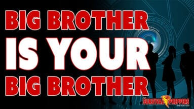 Big Brother IS YOUR Big Brother & the D.C. Police